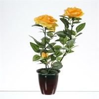 Цветы в горшке Royal Classics