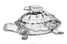 "Доза ""Черепаха"", 26,5 см BOXES"
